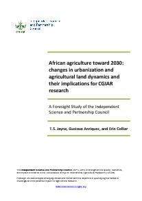 African Agriculture Toward 2030