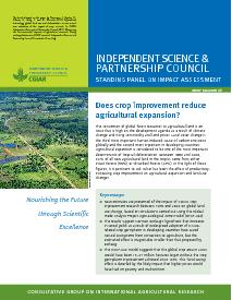 Does Crop Improvement reduce Agricultural Expansion? Brief Number 40