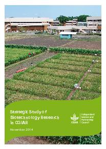 Strategic Study of Biotechnology Research in CGIAR