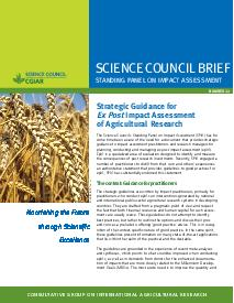 Strategic Guidance for Ex Post IA of Agricultural Research: Brief Number 22