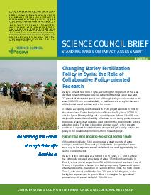 Changing Barley Fertilization Policy in Syria: Brief Number 26
