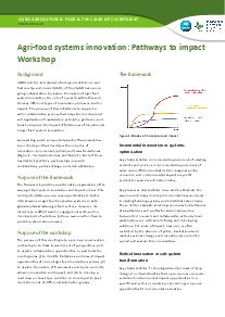 Agri-Food System Innovations: Pathway to Impact Workshop