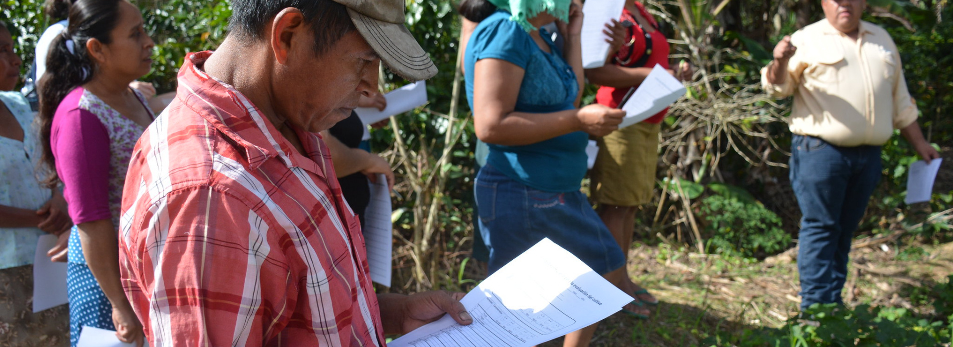 Crop evaluation in La Prensa community of Olopa CSV, Guatemala
