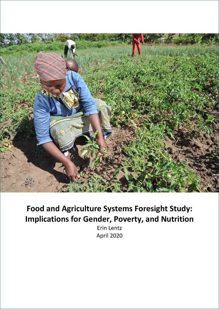 Cover of Implications for Gender, Poverty, and Nutrition
