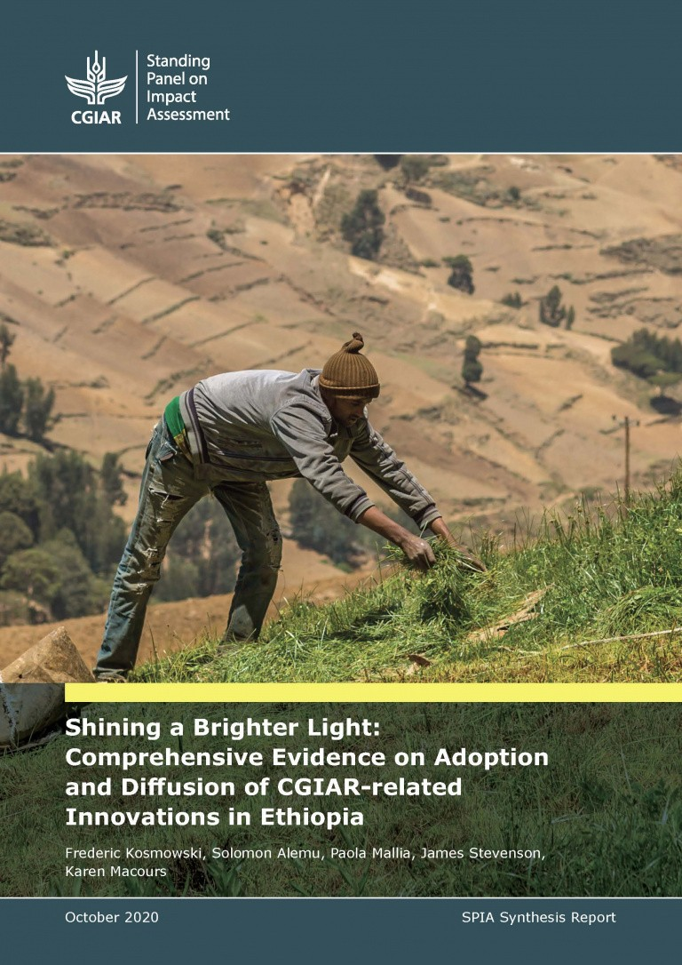 Cover of Ethiopia Strategic Review