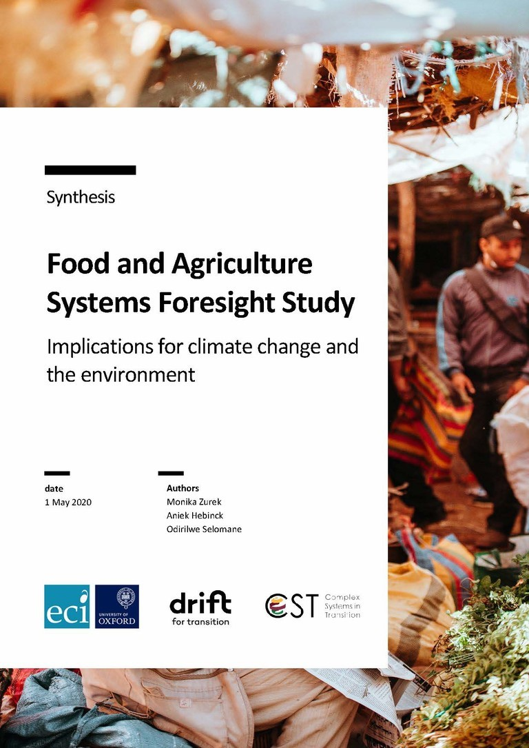 Cover of Synthesis: Food and Agriculture Systems Foresight Study - Implications for climate change and the environment