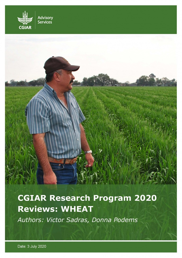 CRP Review WHEAT: Photo: Cimmyt, X. Fonseca